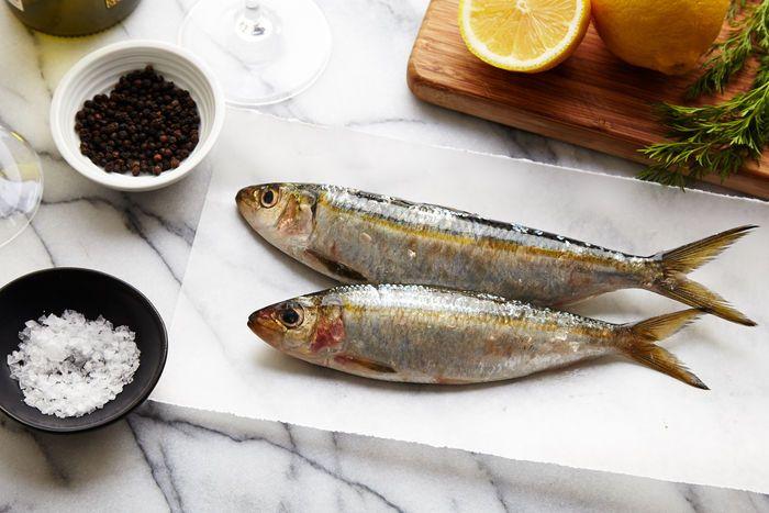 Kết quả hình ảnh cho wild sardines